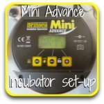 Setting up your Brinsea egg incubator, step by step.