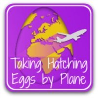 How to transport hatching eggs by plane - link.