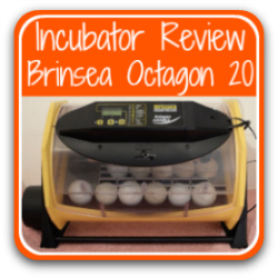 Link to a review of Brinsea's Octagon Advance 20 egg incubator.