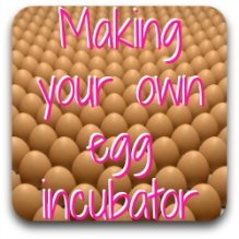 Want to make your own incubator?  Here's how - click on the pic!