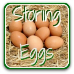 How to store eggs to preserve their freshness - click here.
