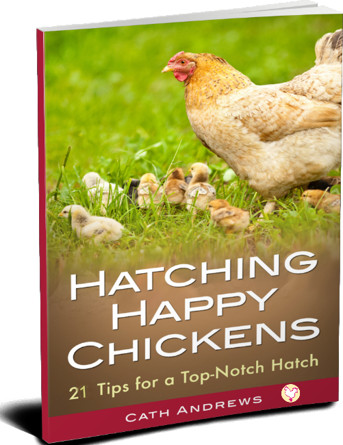 My Kindle book - hatching happy chickens!