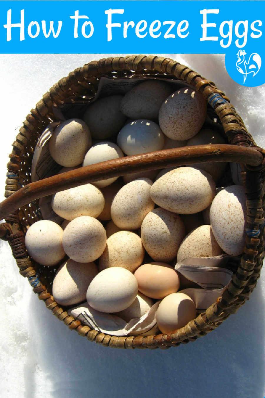 Eggs in freezer tray.