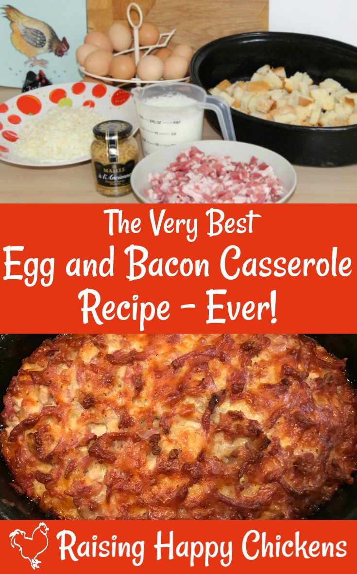 Winter comfort food you can make in advance! Click this link. #easyeggrecipes #backyardchickens #raisinghappychickens