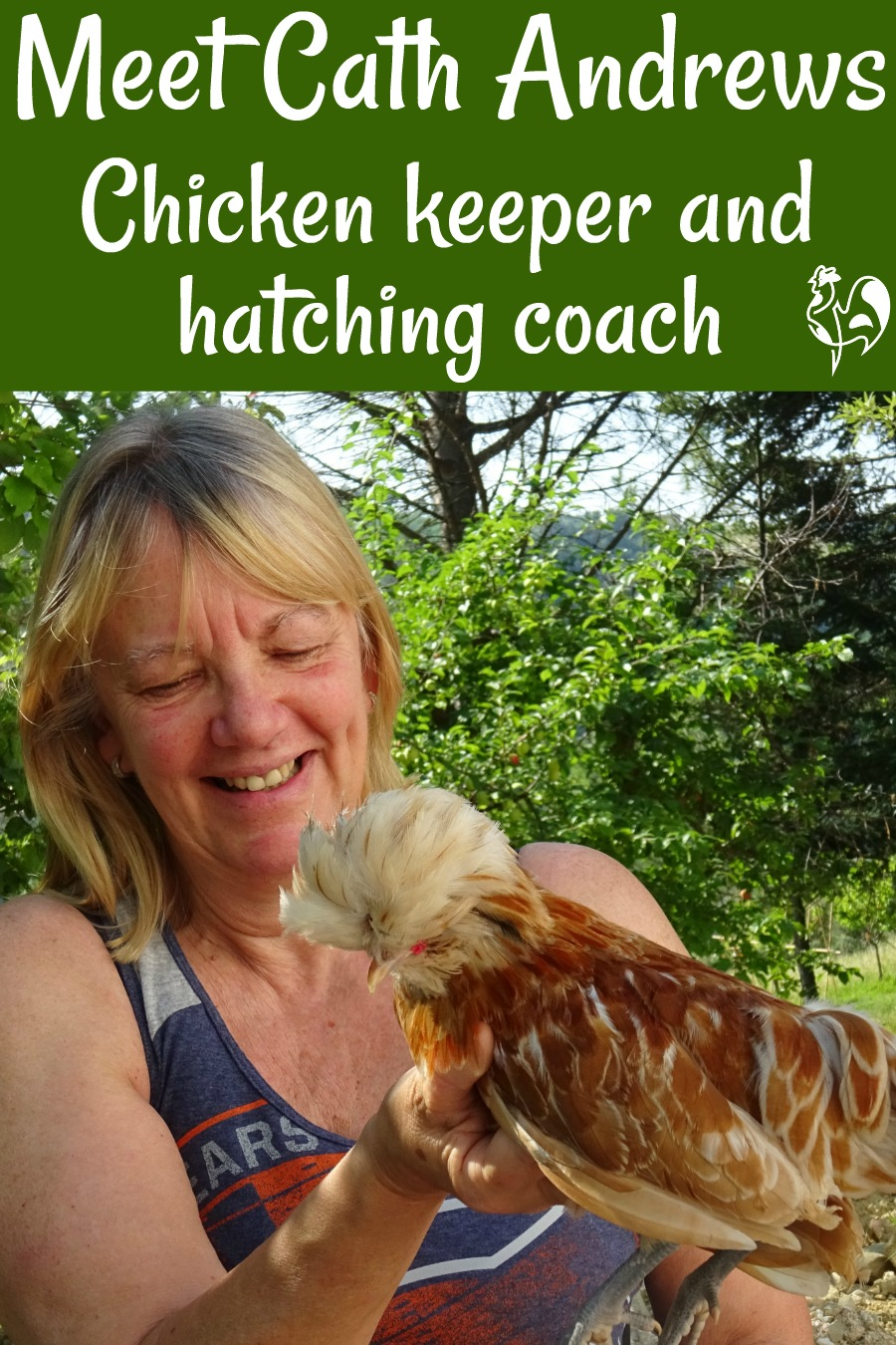 All about Cath Andrews of Raising Happy Chickens - pin for later!
