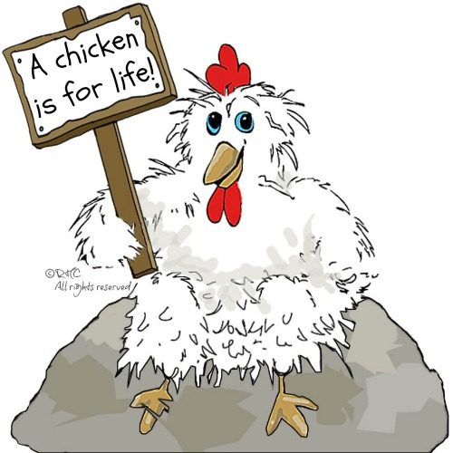 Claudia Chicken says