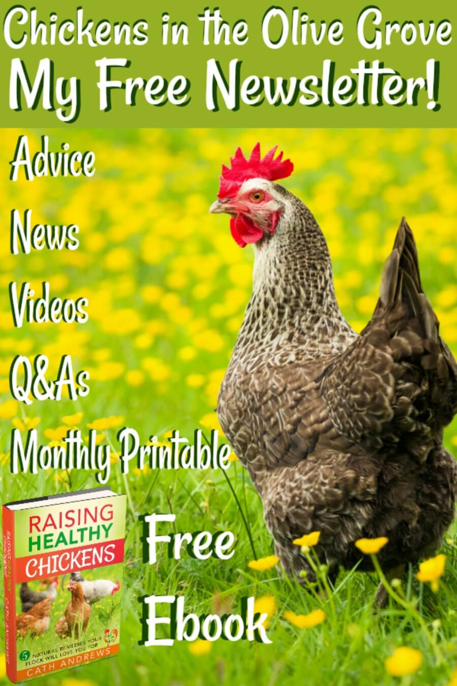 Free newsletter Information, Q&As, monthly printable and complimentary e-book. Pin for later.