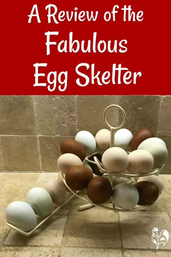 The fabulous Egg Skelter - a great way to store your chickens' lovely, fresh eggs! You'll never have a bad egg again!