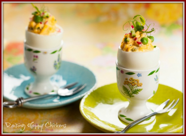 Fresh chicken eggs are ideal for making deviled eggs.