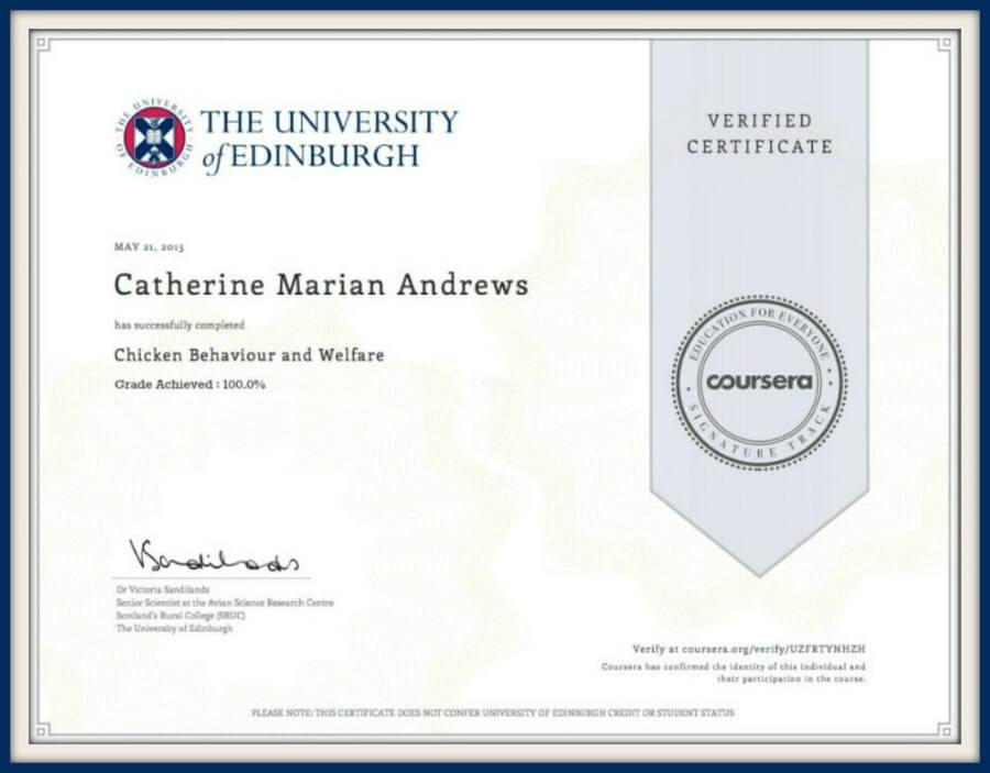 Certificate in chicken welfare and behaviour