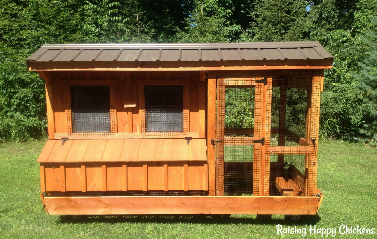 Amish chicken coops are so well made and contain everything a chicken needs to be happy and healthy. They're just one of the coops I feature on my blog!.