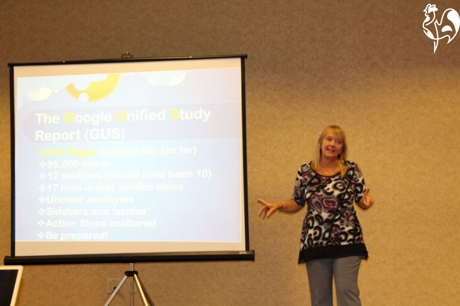 Cath, speaking on building a successful online business to a group in Chicago, USA.