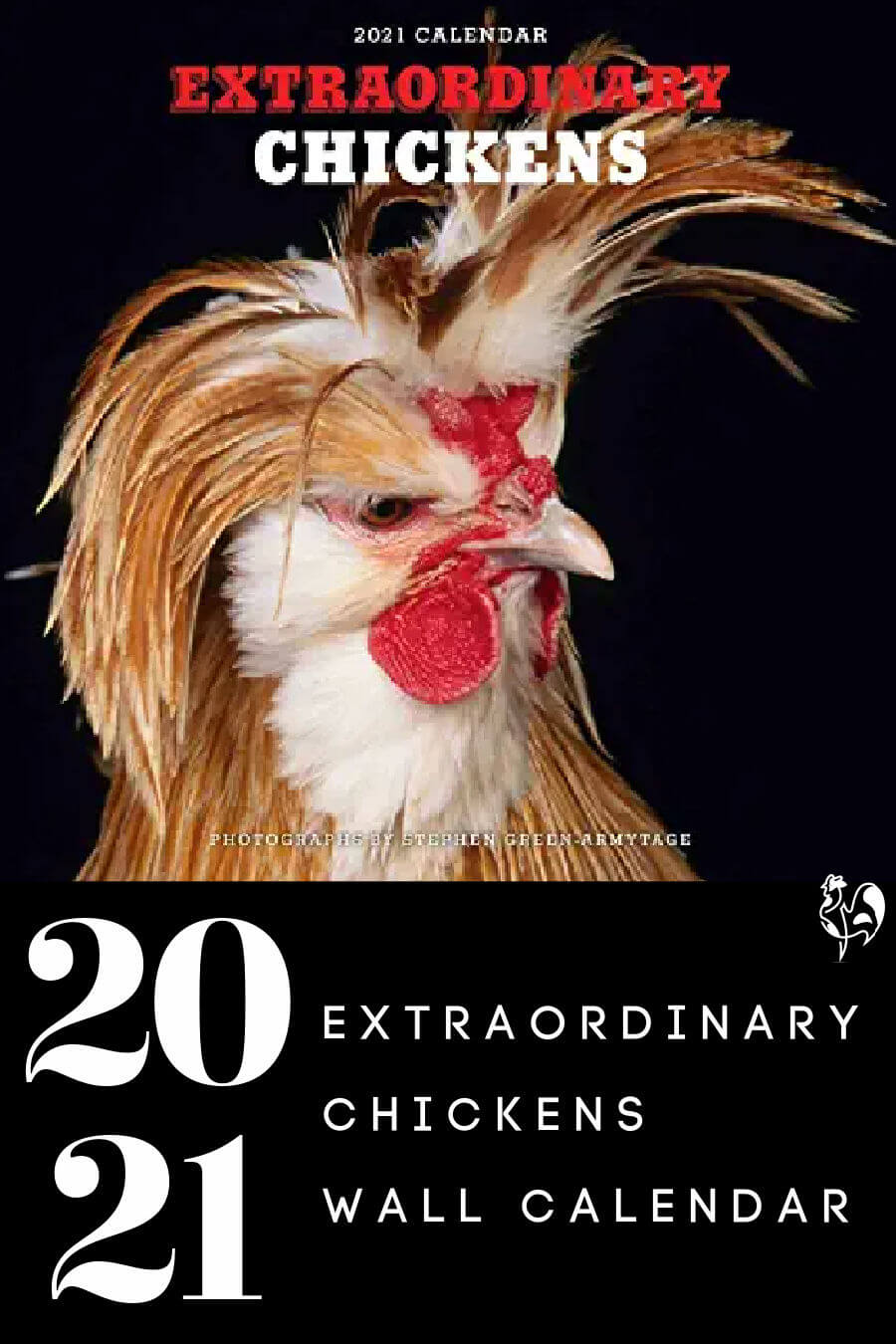 An extraordinary chickens calendar - Pin for later.