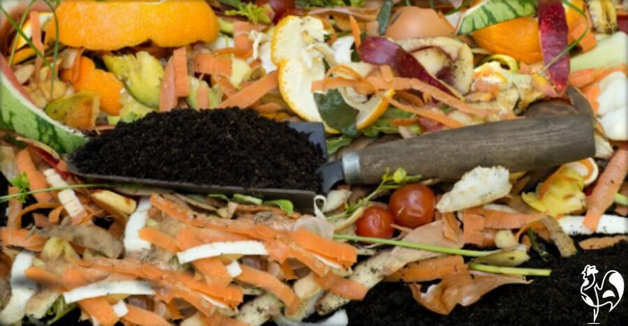 Rats and mice can nest in compost heaps.