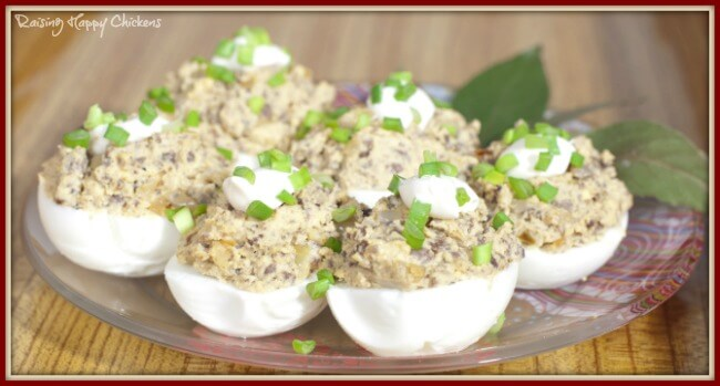 Deviled eggs with tuna - delicious!