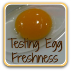 Testing eggs for freshness - all you need to know. Link.