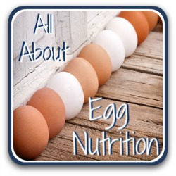 All you need to know about the nutritional value of eggs - link.