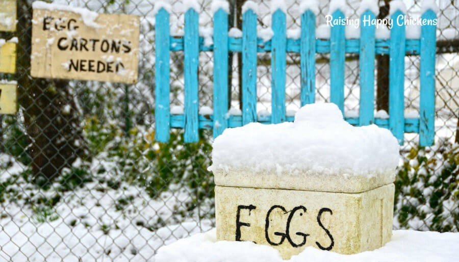 Eggs can be frozen, but not by standing them in snow!