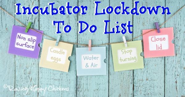 Incubator lockdown to do list
