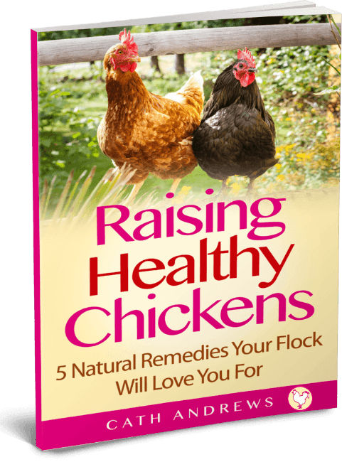 Free ebook : 5 natural remedies for your chickens