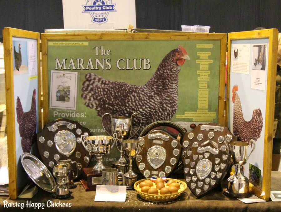 The UK's Marans breed club show stand.