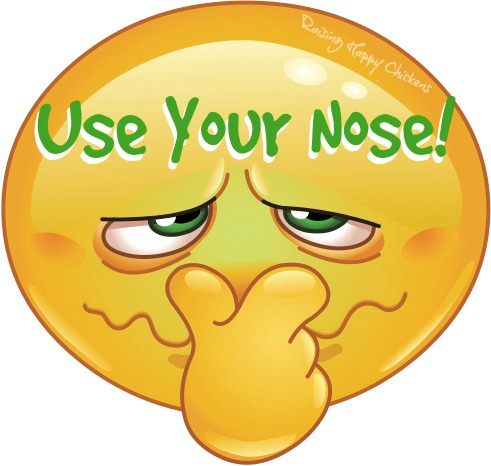 Use your nose when incubating eggs!