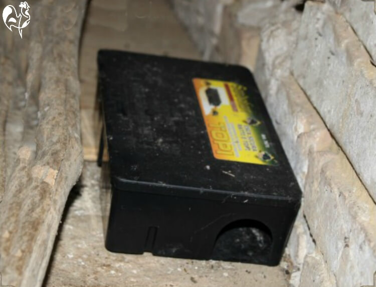 Rat bait station correctly positioned adjacent to a wall.
