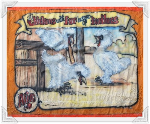Side show banner featuring 'freak chickens'