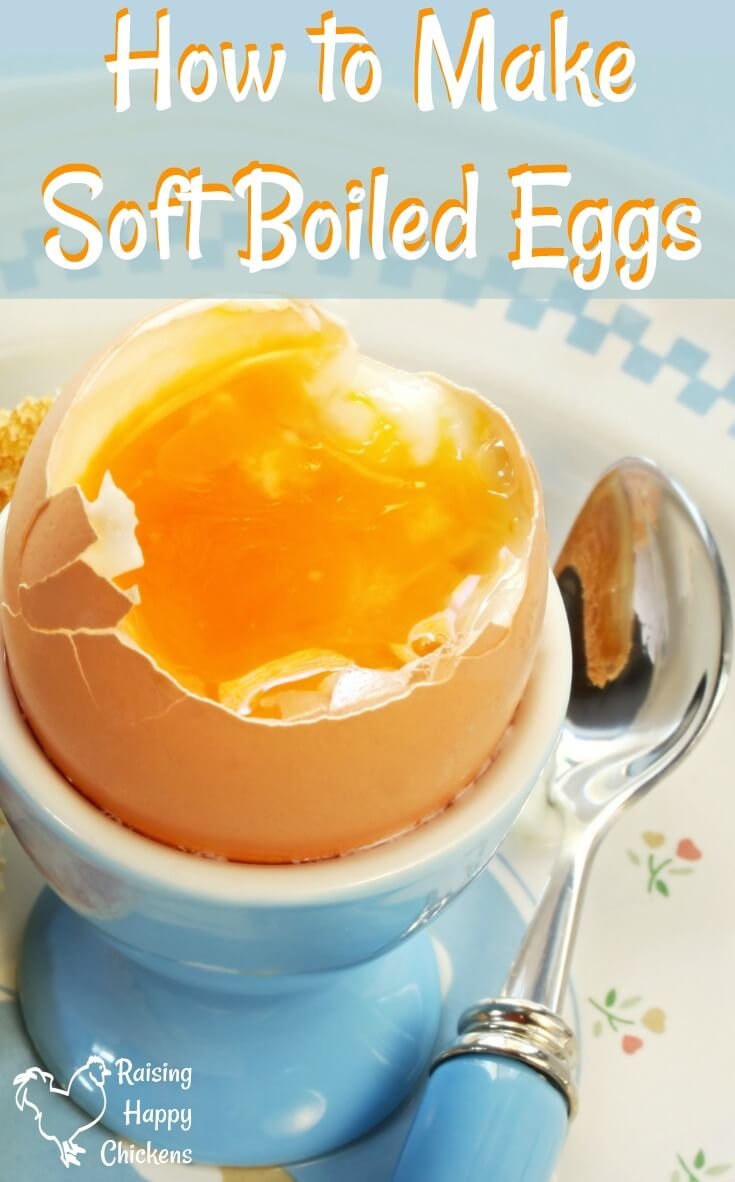 How to make the perfect soft boiled egg: from how long to cook to whether they're healthy, and everything in between. #backyardchickens #softboiledeggs #howtomakesoftboiledeggs #breakfasteggs
