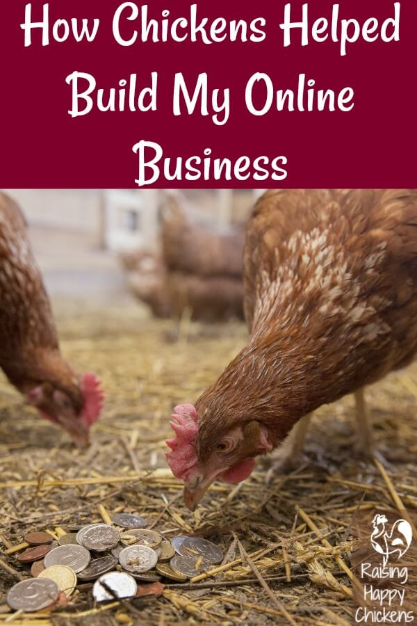 How chickens can help build an online business - Pin for later!