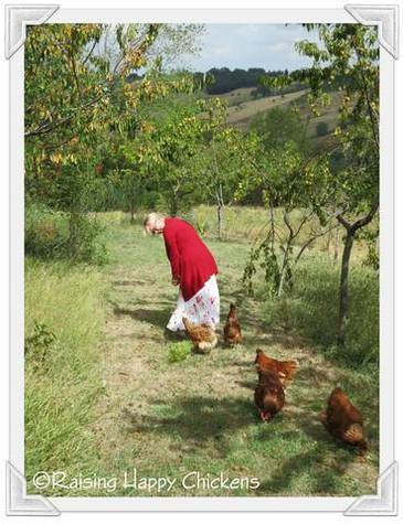 Happy chickens with Cath in our orchard