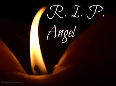 R.I.P. Angel chicken.