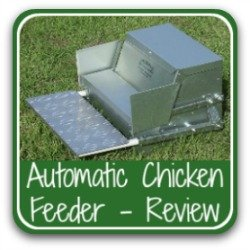 A review of the best automatic chicken feeder on the market - link.