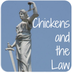 Backyard chickens, the law and you.