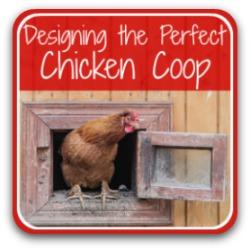6 chicken coop design ideas - link.