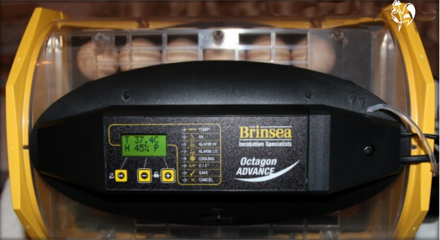 The Brinsea Octagon Advance has a digital screen confirming temperature and humidity.