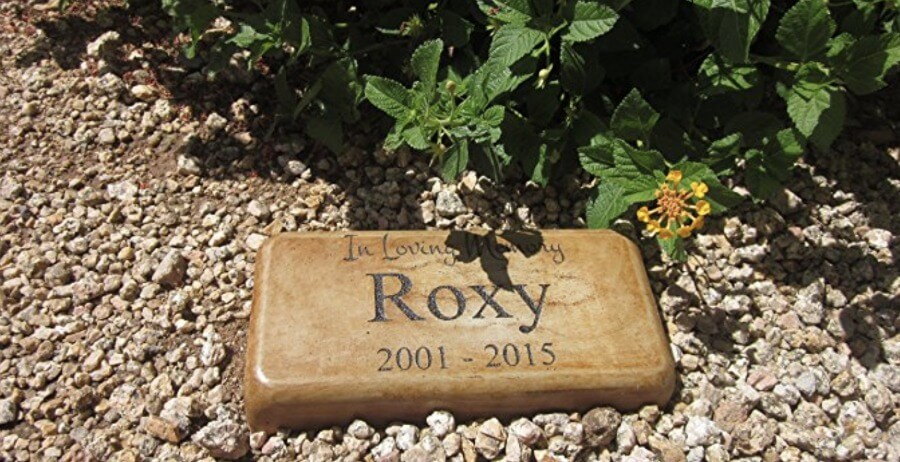 A tasteful memorial stone which can be adjusted to meet the needs of any animal which has passed on, including chickens.