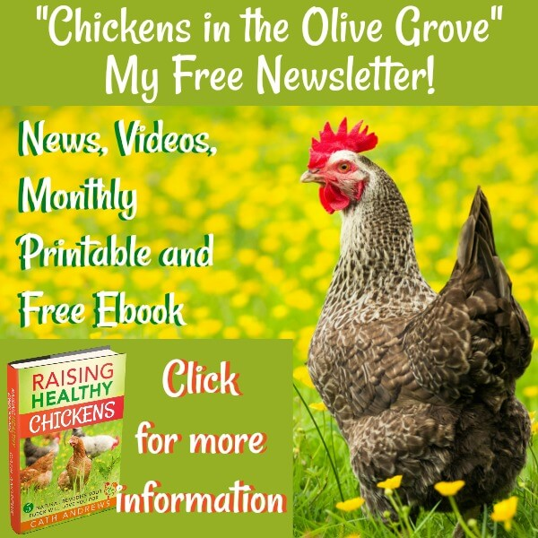 Link - click for more information about my free newsletter!