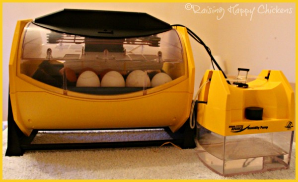 Egg incubator with external humidity pump.