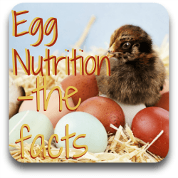 Egg nutrition - the facts - link.
