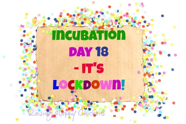 Day 18 of incubation is lockdown day!