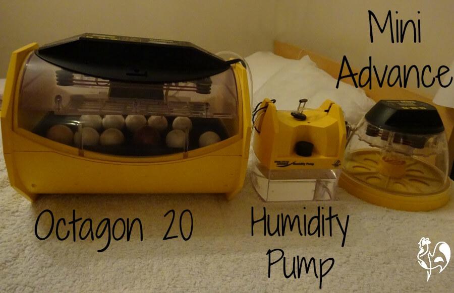 Brinsea's egg incubator humidity pump