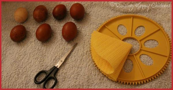 Preparing a non slip base for an incubator hatch.
