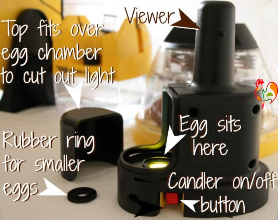 The Brinsea OvaScope makes candling darker eggs easier.