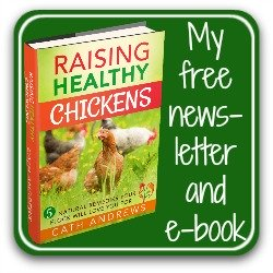 My free newsletter and e-book download - link.