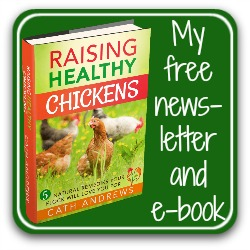 My free newsletter and downloadable e-book - click here!