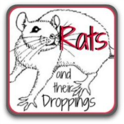 Rats, mice and how to tell the difference by their droppings. Link.