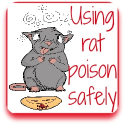 How to use rat poison safely - link.