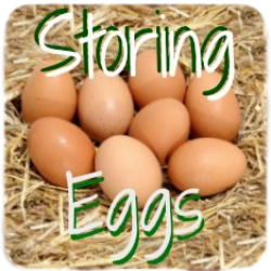 How to store chicken eggs - link.