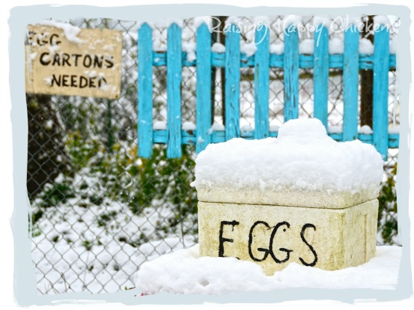 Don't store fertile hatching eggs in the snow!
